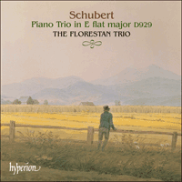 Cover of CDA67347 - Schubert: Piano Trio D929