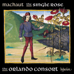 Machaut: The single rose