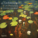 Cover of 'Rachmaninov: 24 Preludes' (CDA67700)